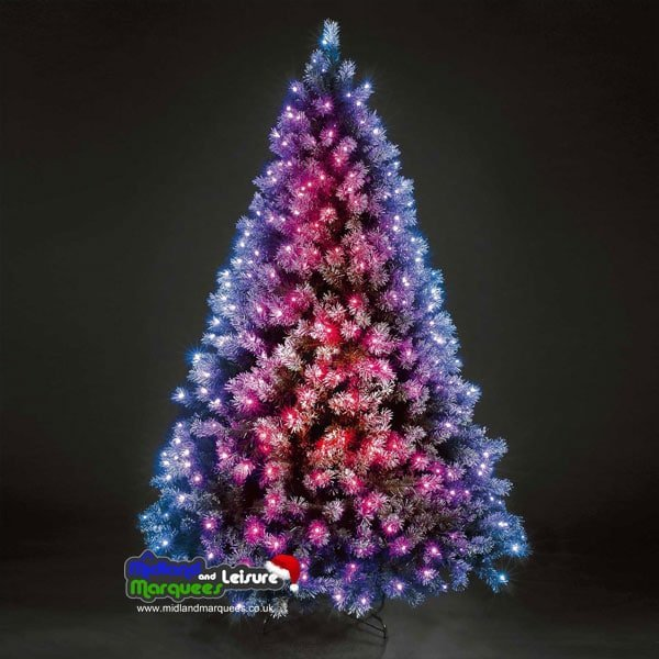 7 Foot Frosted Baltic Colour Changing indoor/Outdoor Christmas Tree